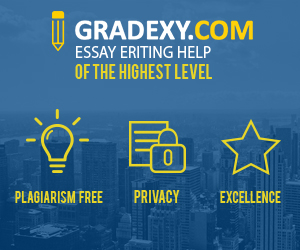 write custom essays