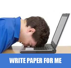 custom essay meister