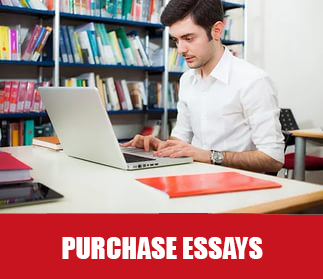 type my essays