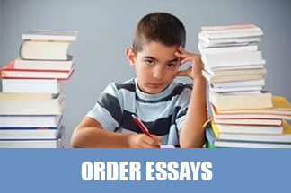 essay on ideal student with quotations