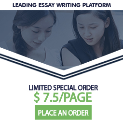 professional essay writing services review