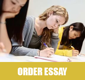 help to write an essay online