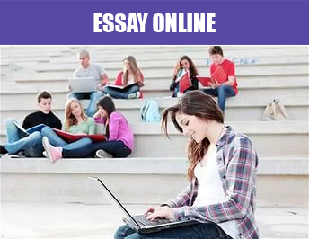 custom writing essay service